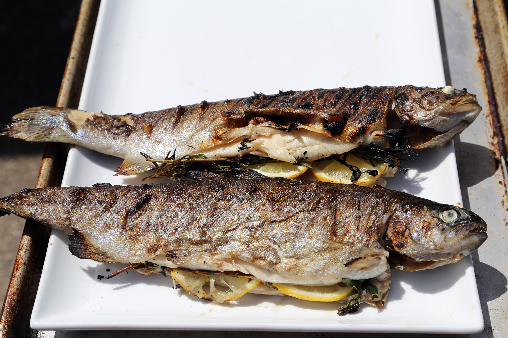 Serve Grilled Rainbow Trout right off the grill.