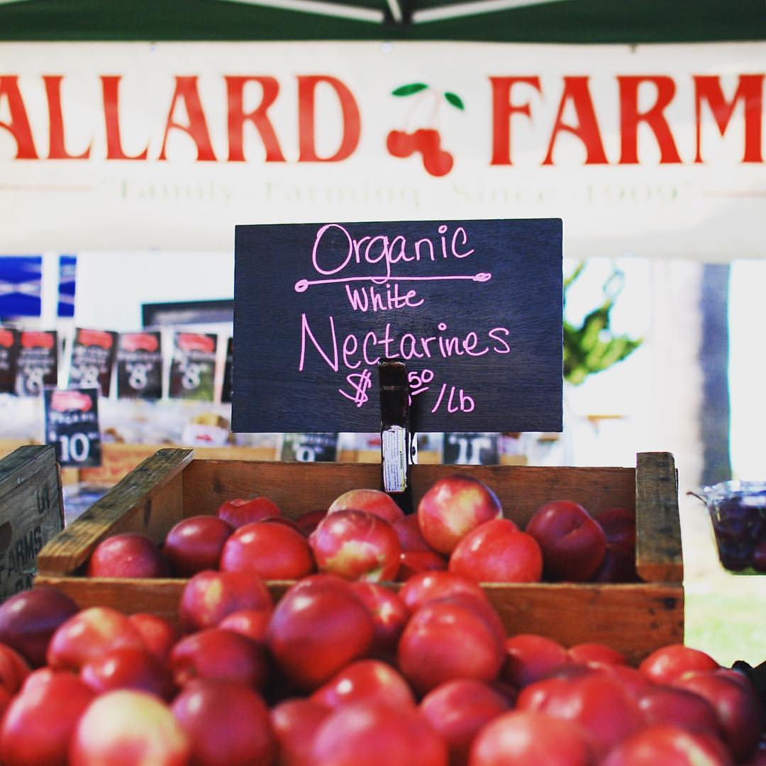 Bay Area Bites Guide to Farmers Markets in the East Bay