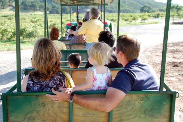 Tractor tram