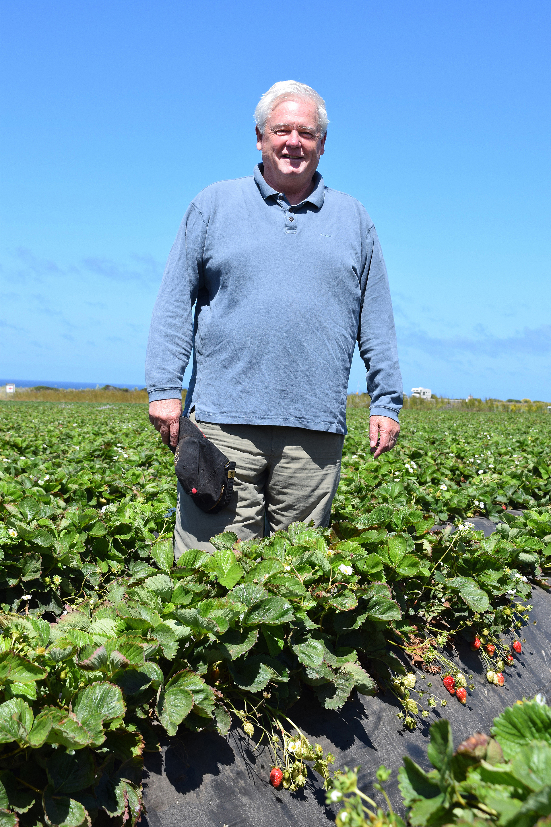 Jim Cochran of Swanton Berry Farm was California's first organic strawberry grower and produces some of the tastiest berries in the state.