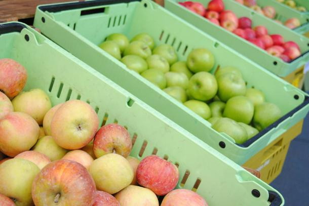 Hidden Star Orchards apples