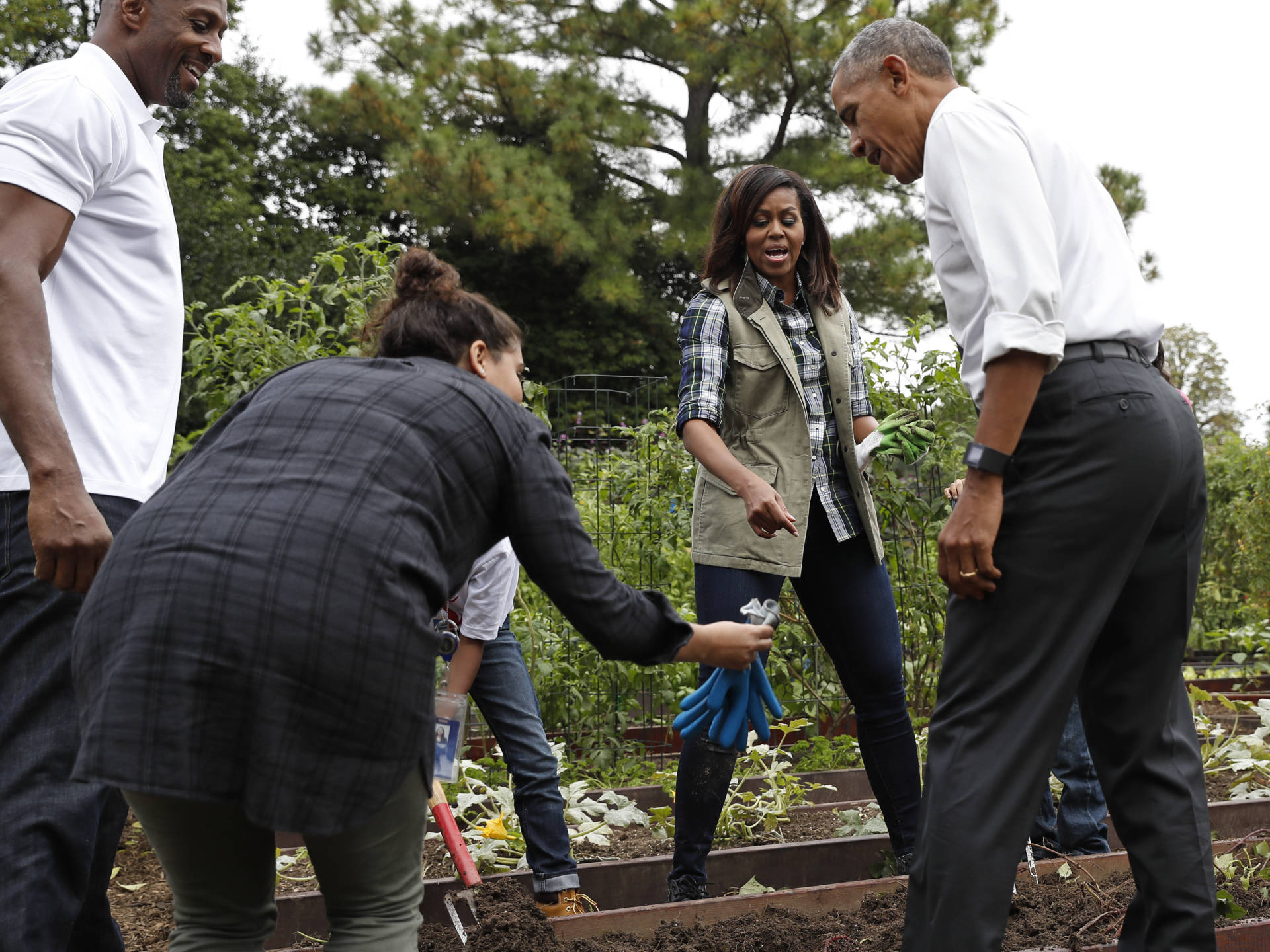 President Barack Obama is handed a pair of gardening gloves as first lady Michelle Obama, second from right, and NBA basketball player Alonzo Mourning, left, watch during the harvest of the White House Kitchen Garden on the South Lawn White House in Washington.