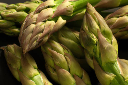 "The 18th century French botanist Louis Lémery wrote that asparagus causes ""a filthy and disagreeable smell in the urine, as everybody knows."" Not everybody, Louis. Not everybody."