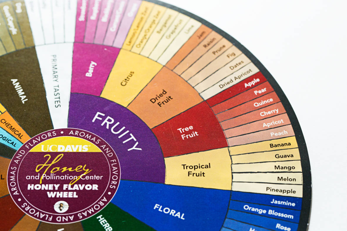 One Man's Quest To Reinvent The Wheel — The Flavor Wheel, That Is