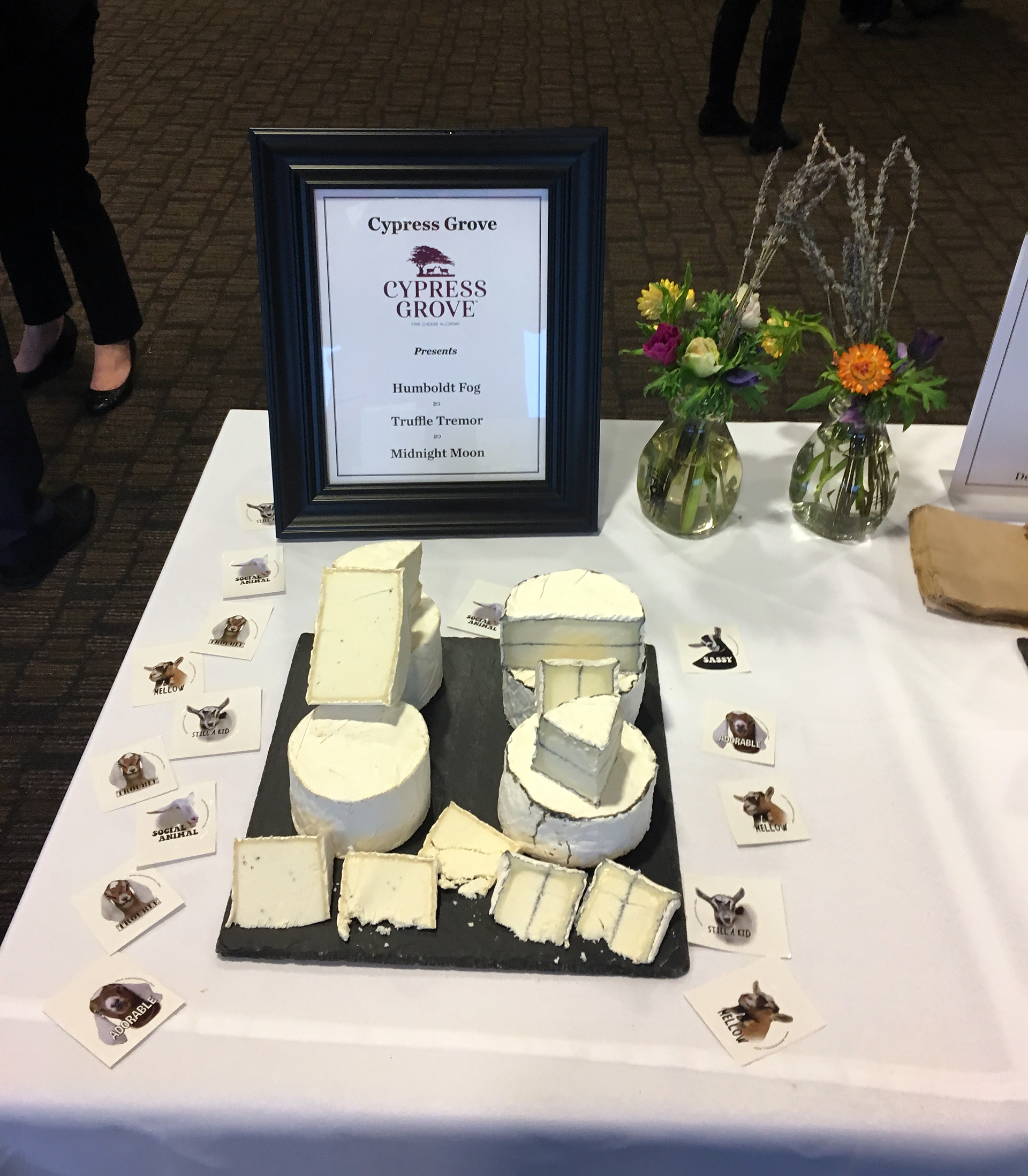 Cypress Grove Cheese: A display of 3 cheeses from Cypress Grove