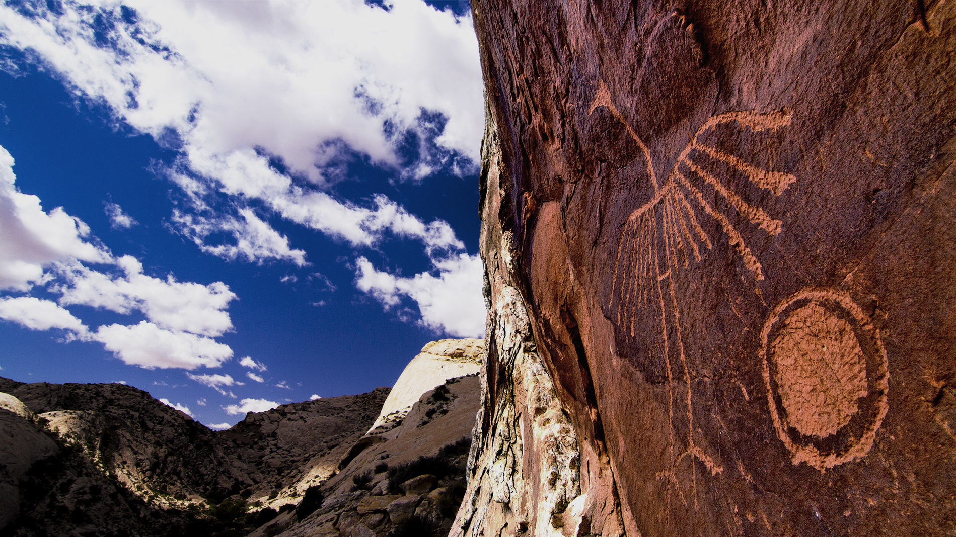 A petroglyph of a crane on Comb Ridge, part of the Bears Ears National Monument. The Ancestral Puebloans lived in the area's alcoves and grew corn in its washes, according to the Bears Ears Inter-Tribal Coalition.