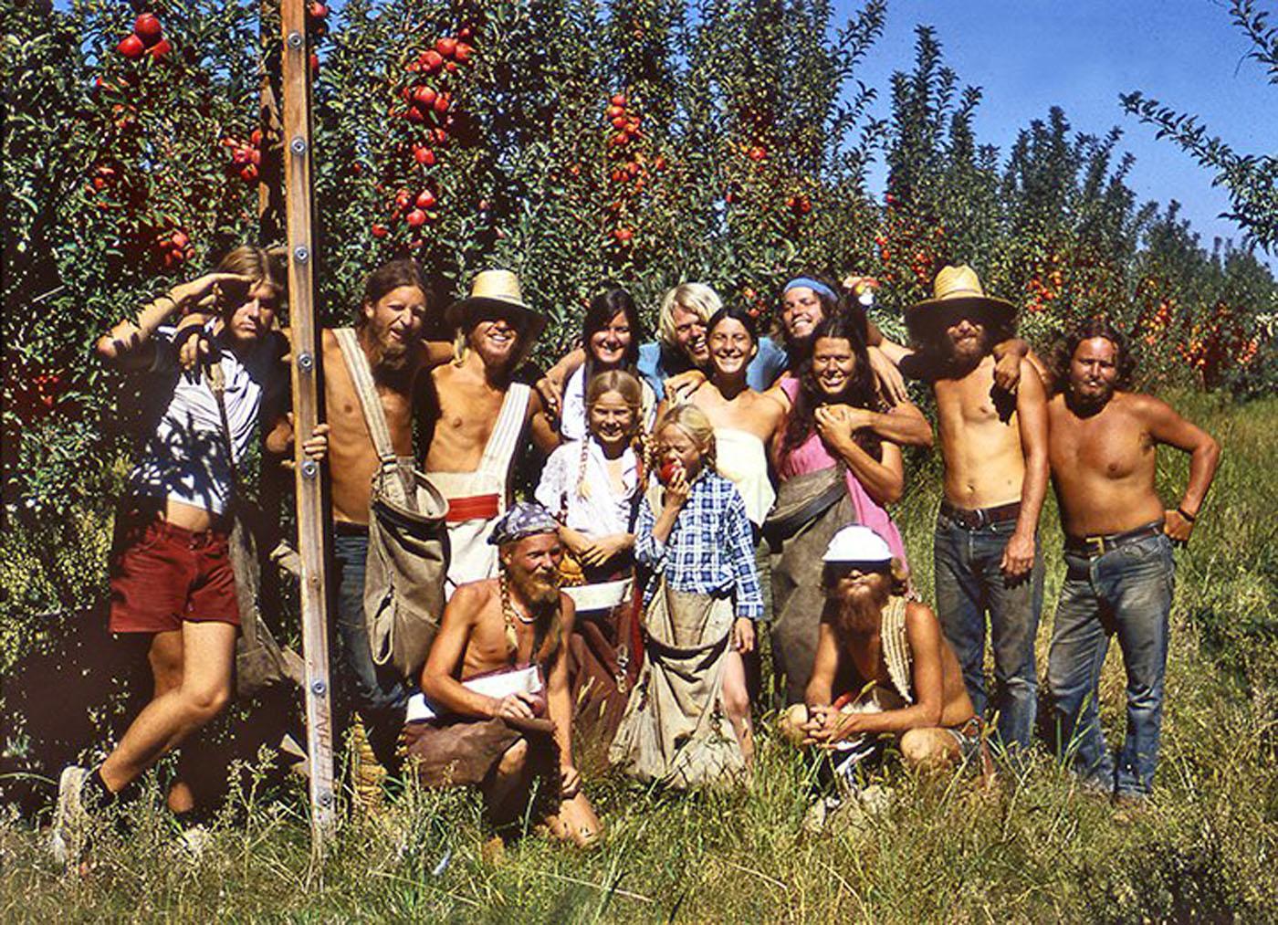 Sunburst Farm apple pickers; Evolution of Organic