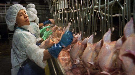 Poultry workers at major U.S. meat-processing plants are highly susceptible to repetitive-motion injuries, denied bathroom breaks and are most often immigrants and refugees.