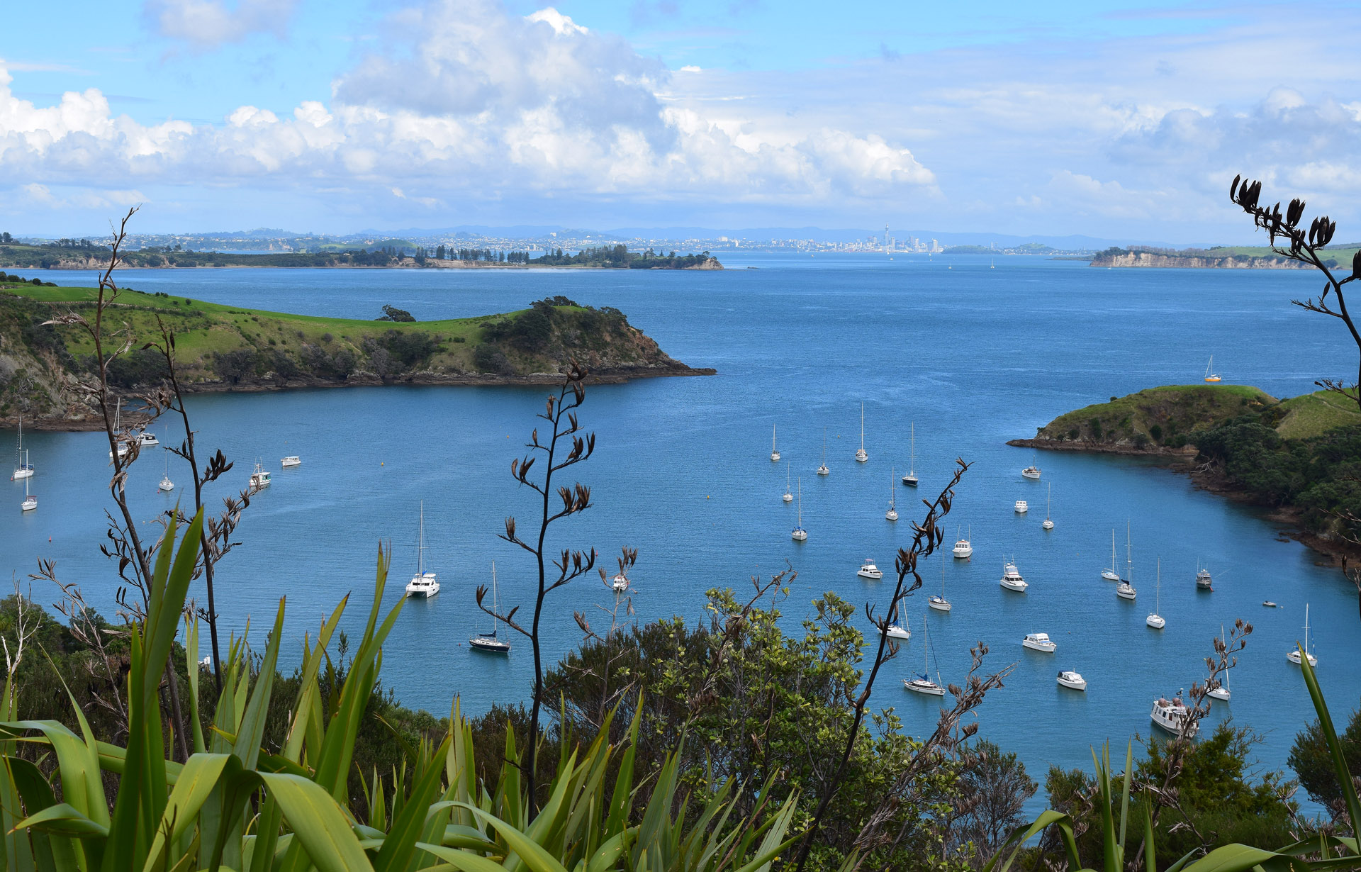 """Terrific syrahs and Bordeaux blends are found on gorgeous Waiheke Island near Auckland, called """"the island of wine"""" and popular with visitors who like to taste wine, dine, hike and bike."""