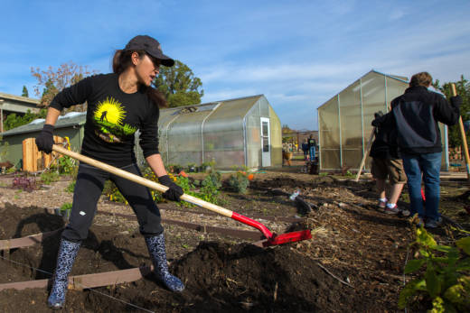 Can san jose revitalize local food and farms in silicon valley can san jose revitalize local food and farms in silicon valley malvernweather Choice Image