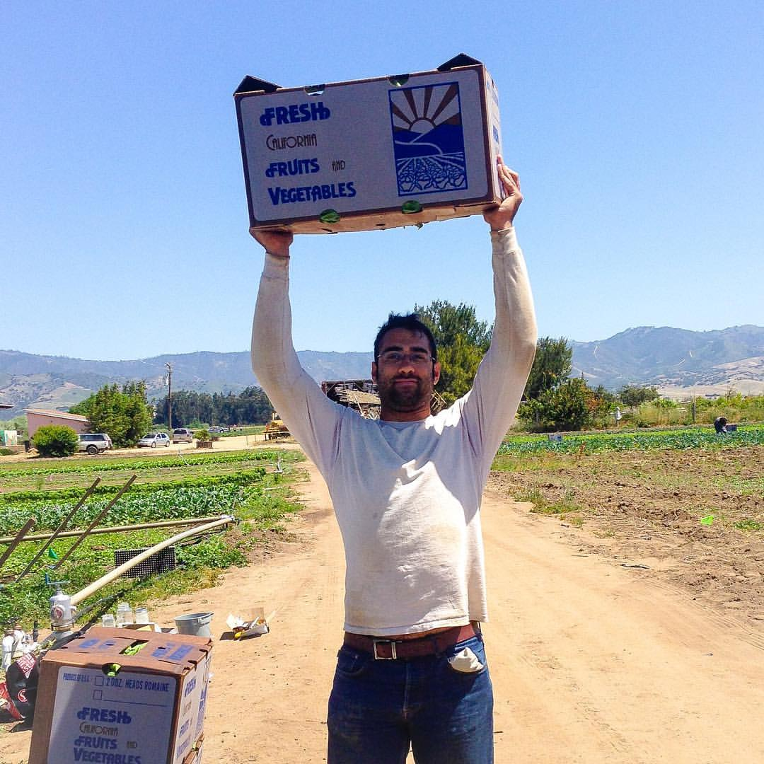 Matthew Loisel hoists some harvested produce at Lazy Millennial Farms.