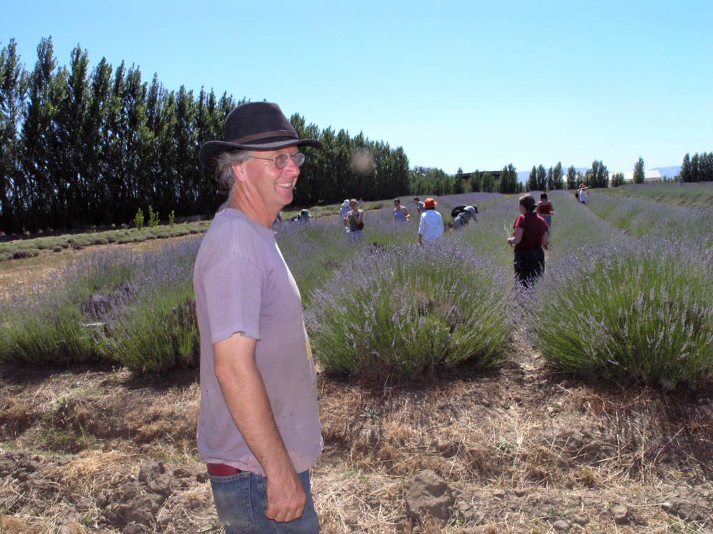 Walker surveys his lavender fields at Eatwell Farm.