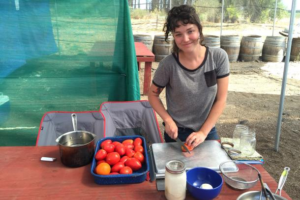 Tomato canning party at Eatwell Farm in Dixon.