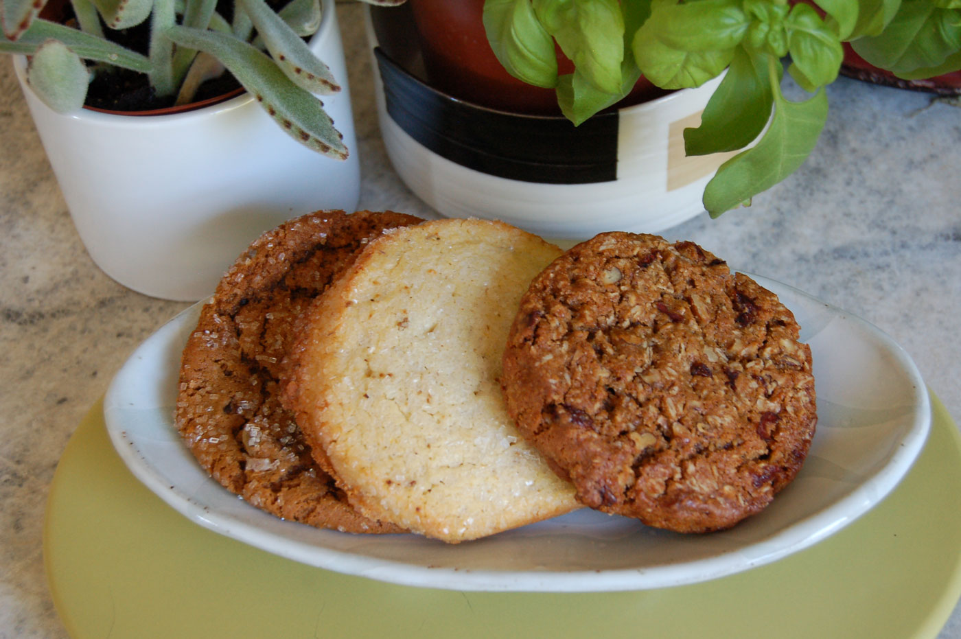 Firebrand Bakery's Ginger, Lemon Lavender and Oatmeal cookies