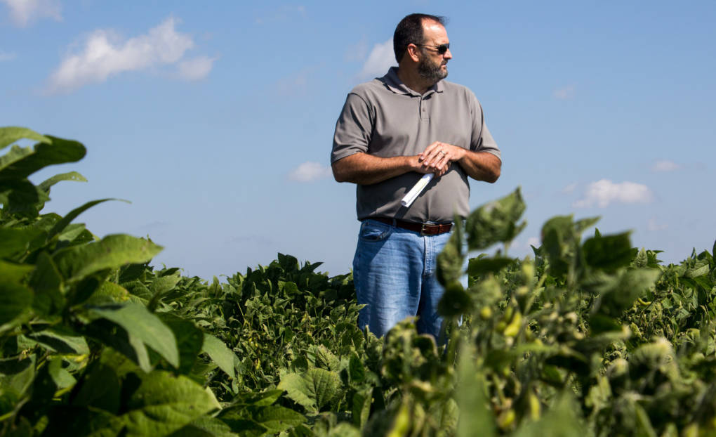 """Bob Scott, a weed scientist at the University of Arkansas, says he wishes more testing could have been done on the new dicamba formulations, but """"the product was not made available to us."""""""