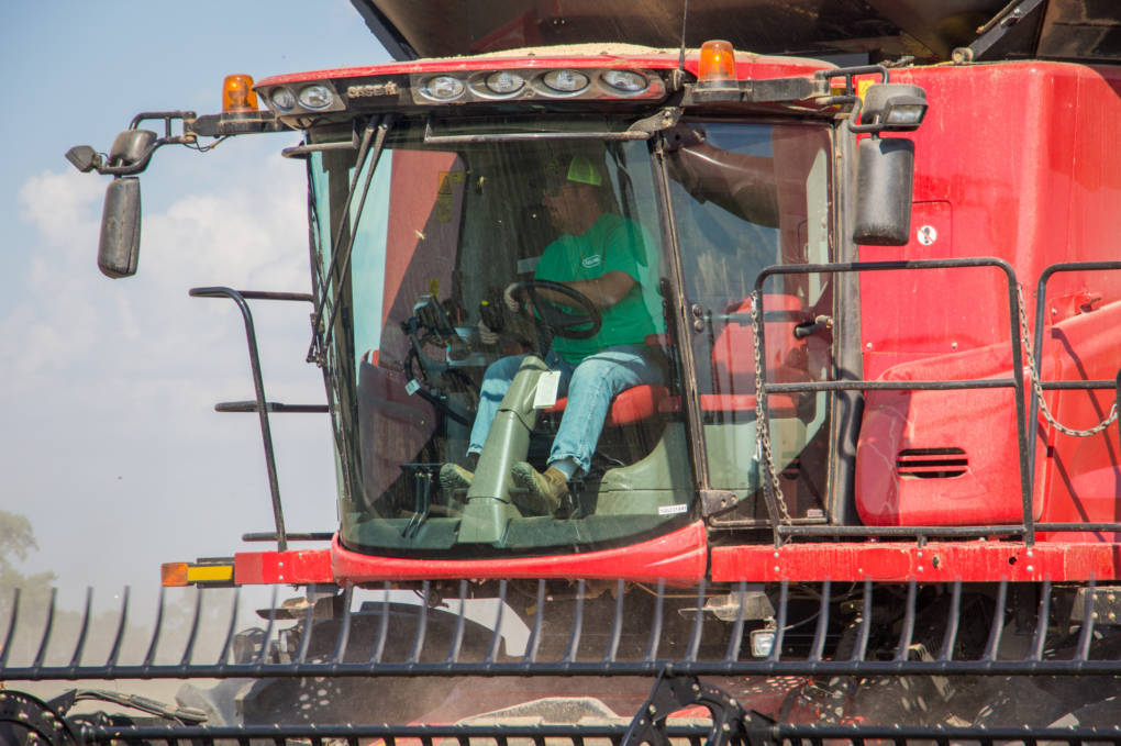 """Brent Henderson harvests soybeans on his farm near Weona, Ark. """"If it's going to be legal to use and neighbors are planting it, I'm going to have to plant [dicamba-tolerant soybeans] to protect myself,"""" he says. """"It's very annoying. ... My neighbor should not dictate what I do on my farm."""""""