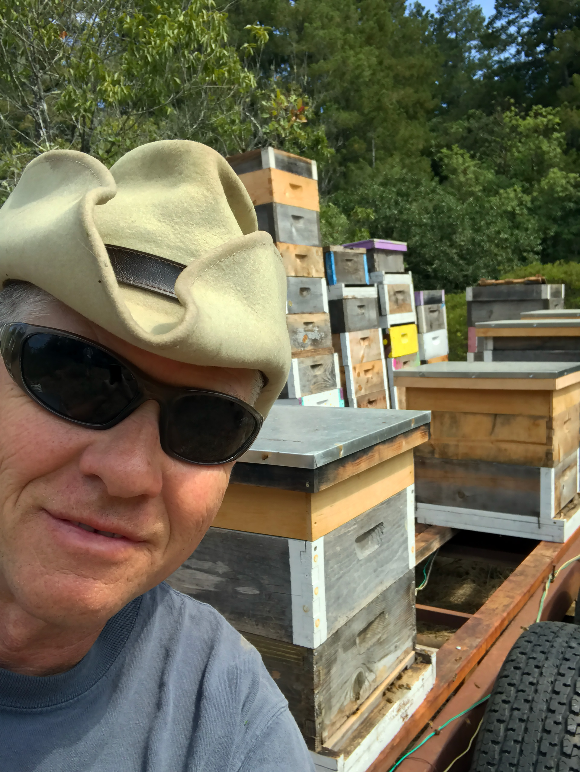 DeWitt Barker with his bees in Graton.