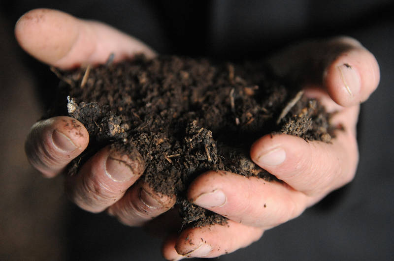 Scientists Peek Inside the 'Black Box' of Soil Microbes to Learn Their Secrets