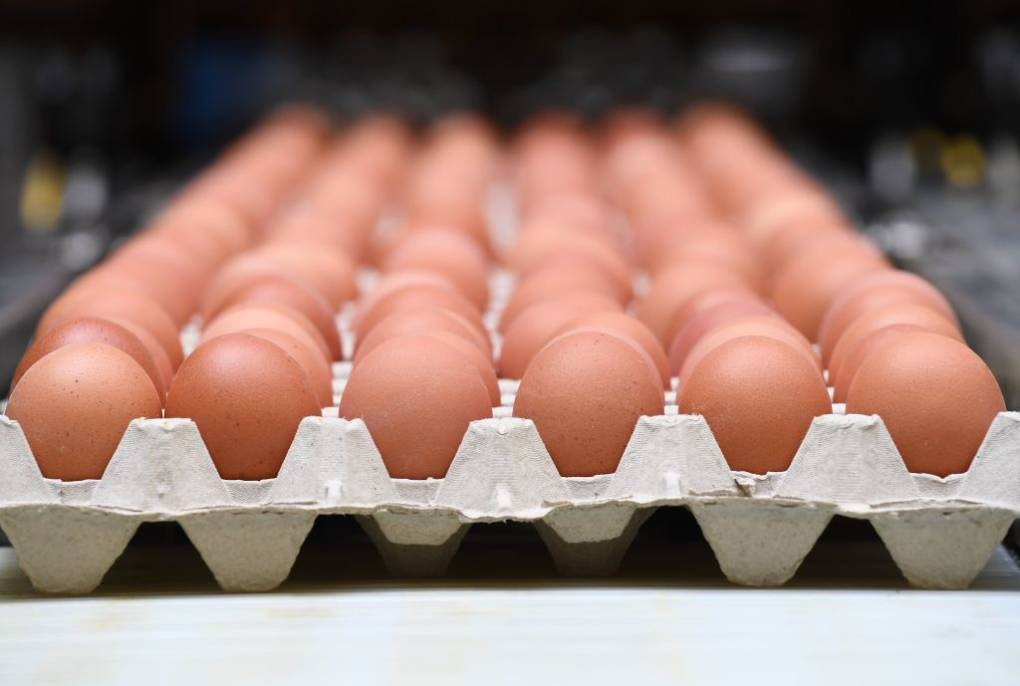 You'll Be Shelling Out More Money For Eggs In 2018