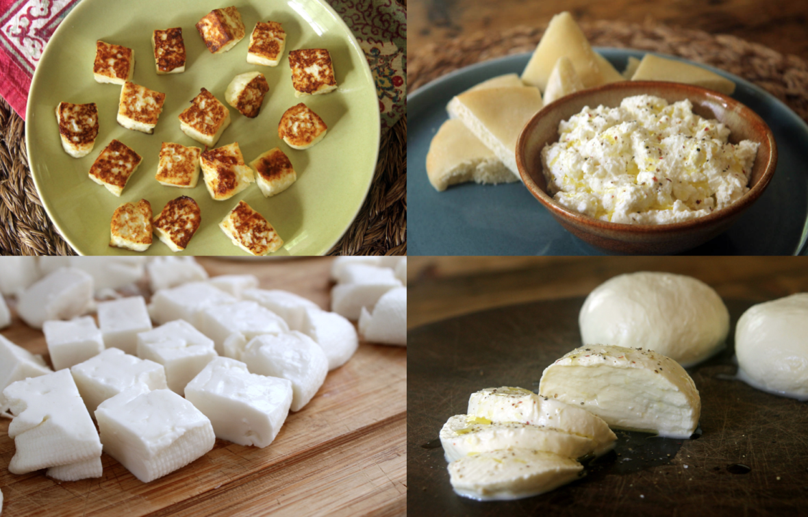 Bay Area Bites' Guide to Making Your Own Cheese