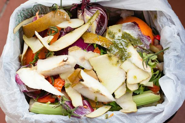 Confused About Composting? Nine Common Questions Answered