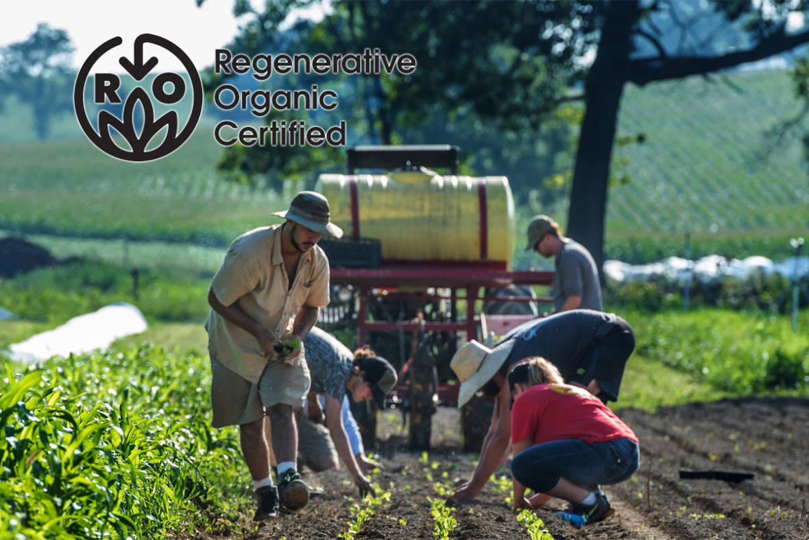 What Does the New Regenerative Organic Certification Mean for the Future of Good Food?