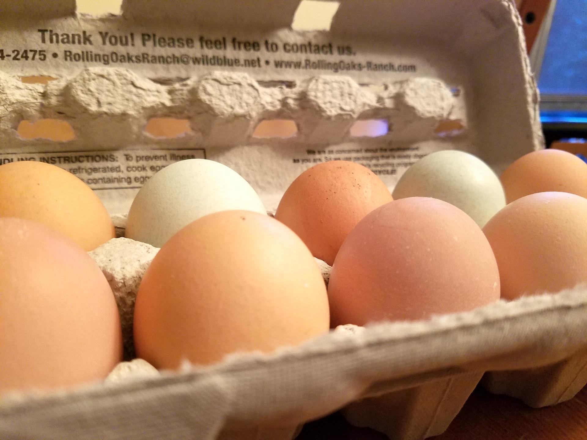 Rolling Oaks eggs