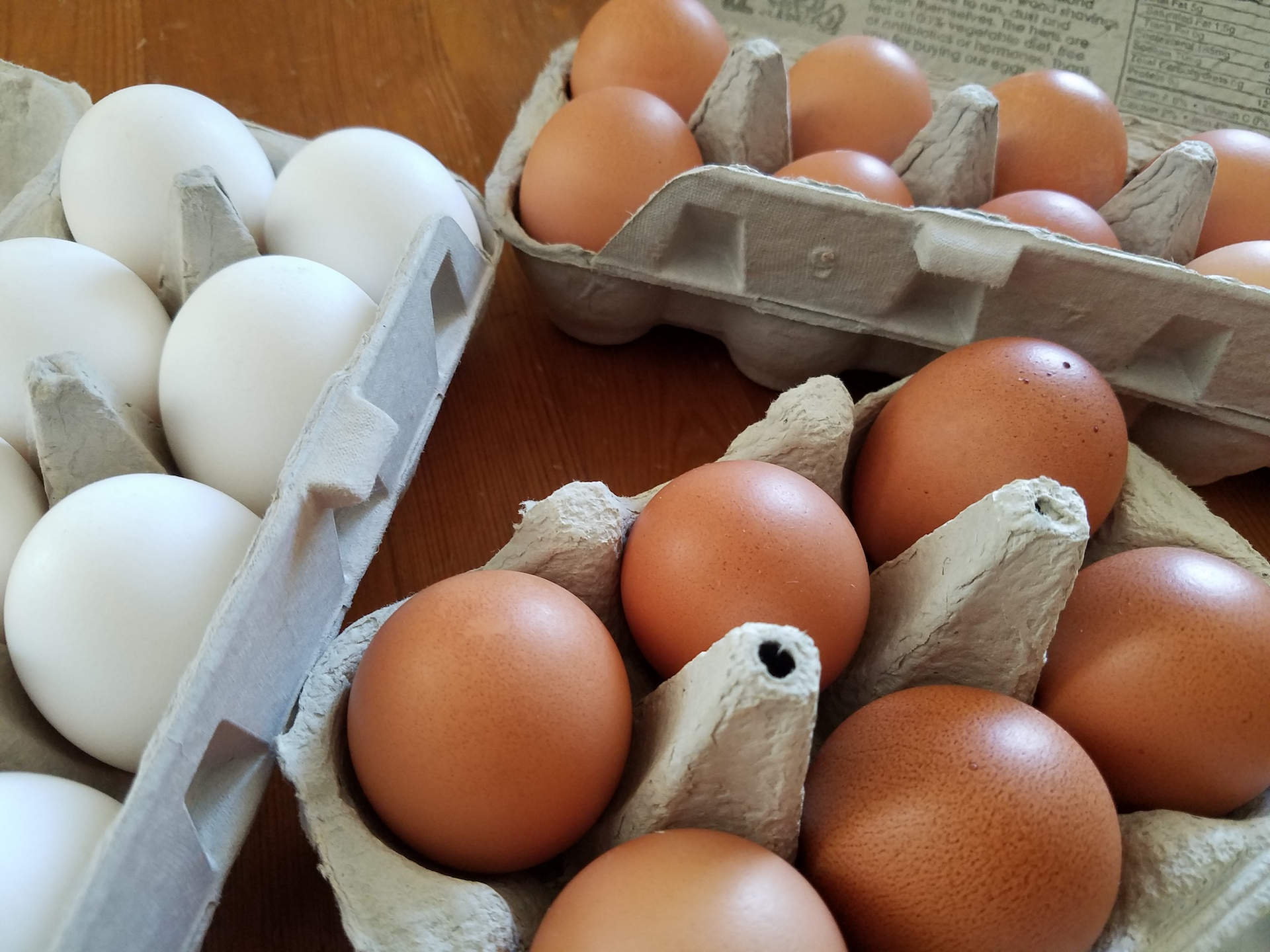 Eggs from Uncle Eddie's, Judy's Family Farm, and Rock Island.
