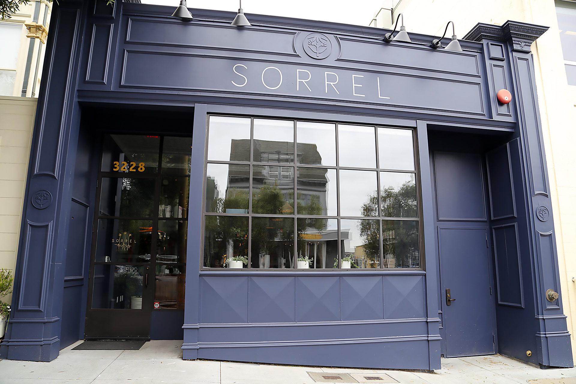 Sorrel in Presidio Heights