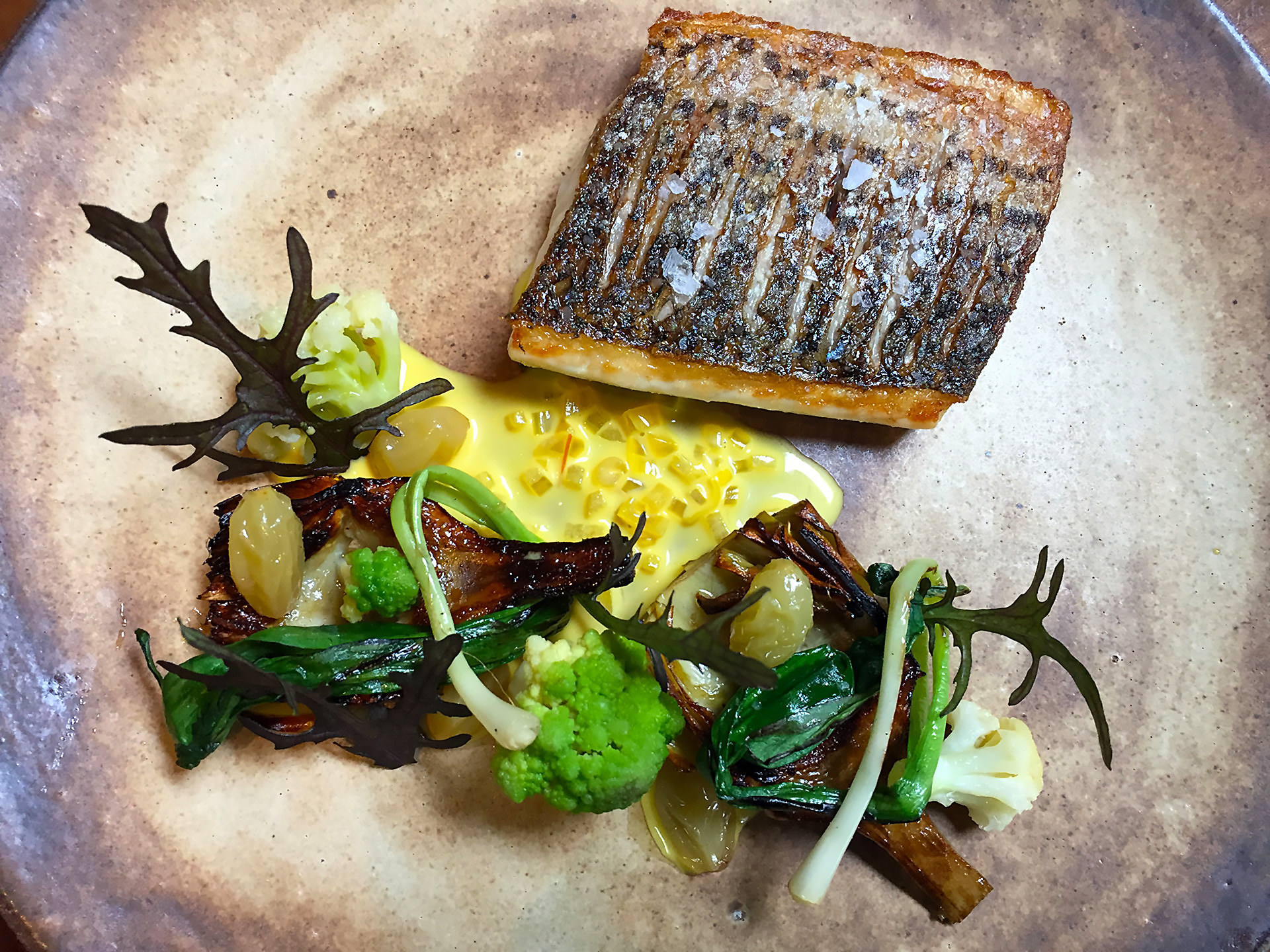 Striped Bass with artichoke, cauliflower, sultana, wild ramps, saffron at Sorrel