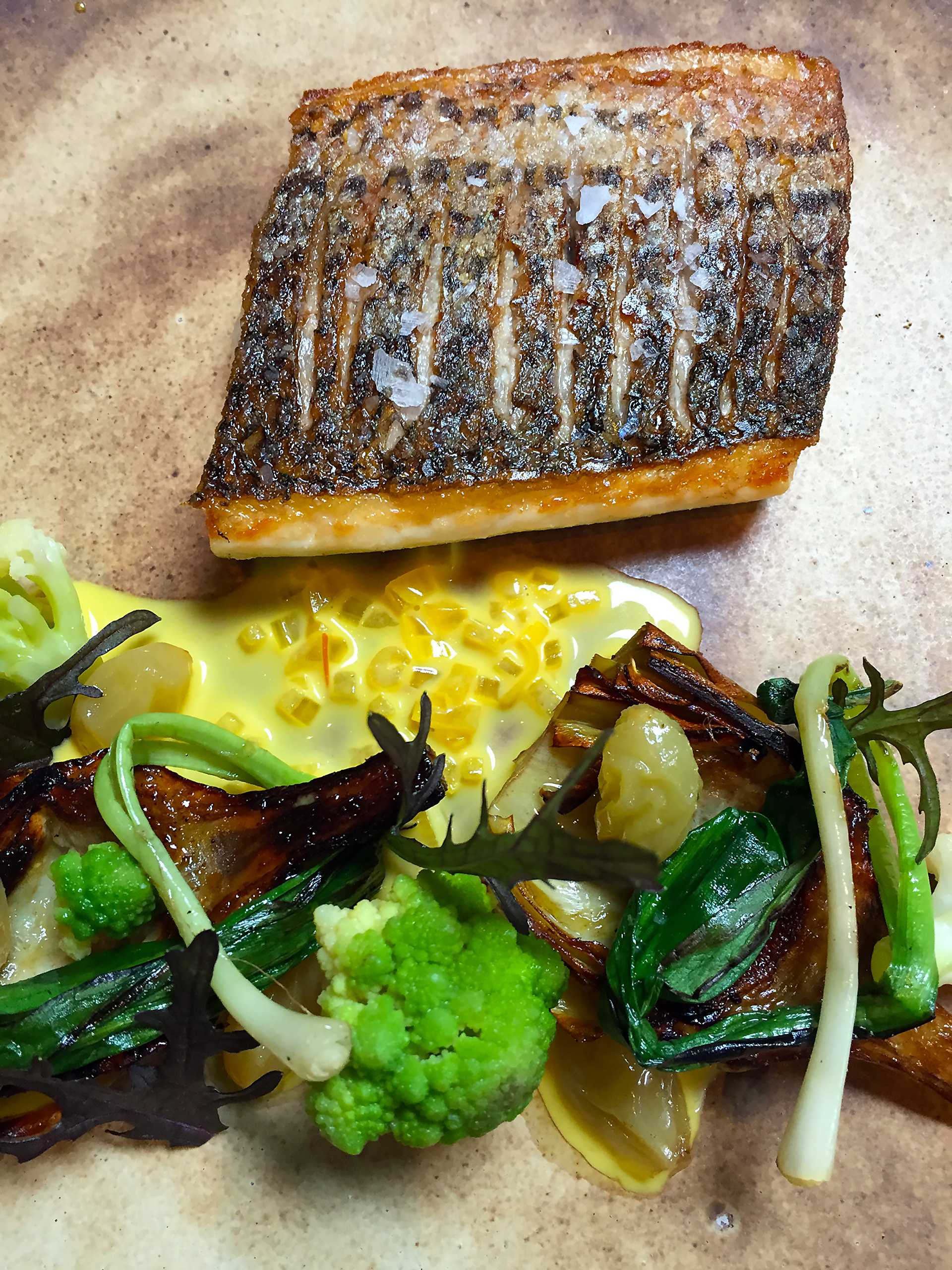 Striped bass with artichoke, cauliflower, sultana, wild ramps, saffron