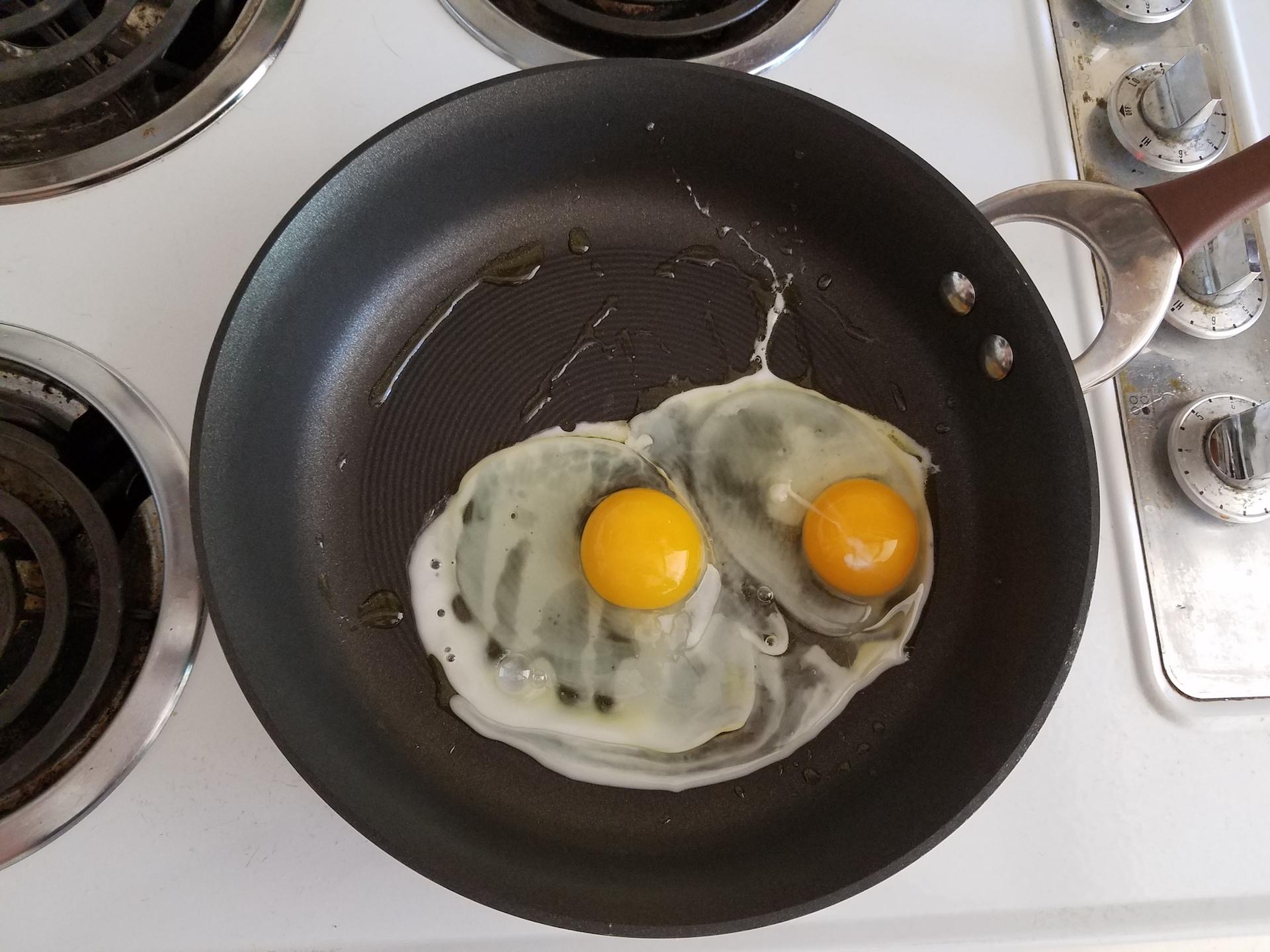Rock Island eggs