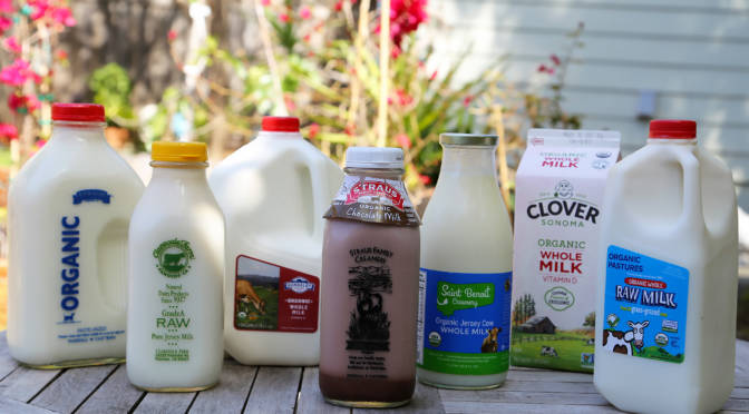 Taste Test: Local, Sustainable Whole Milk From 6 Top