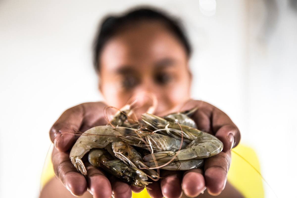 Melati holding shrimp.
