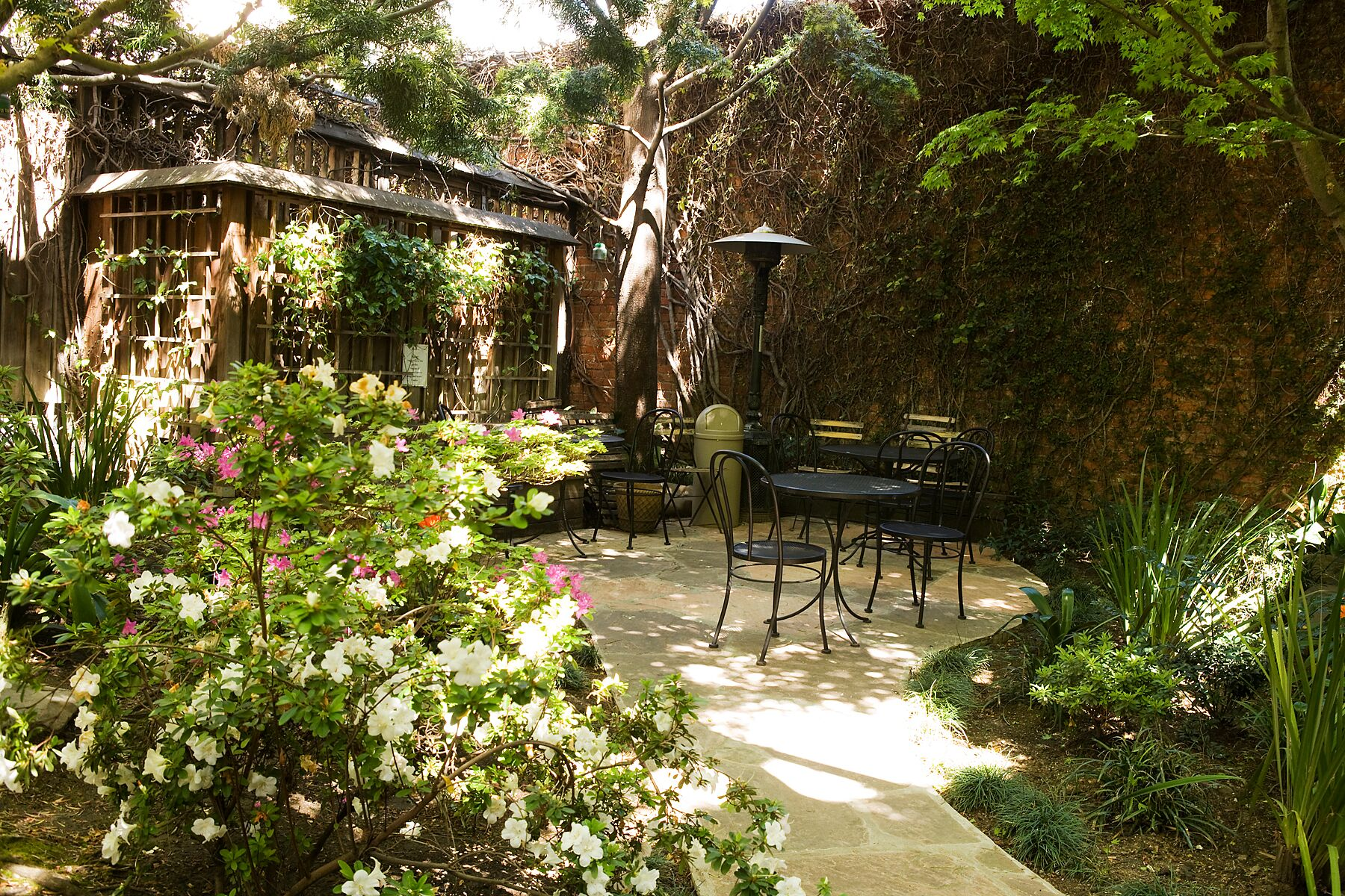 The dreamy patio behind Arlequin.