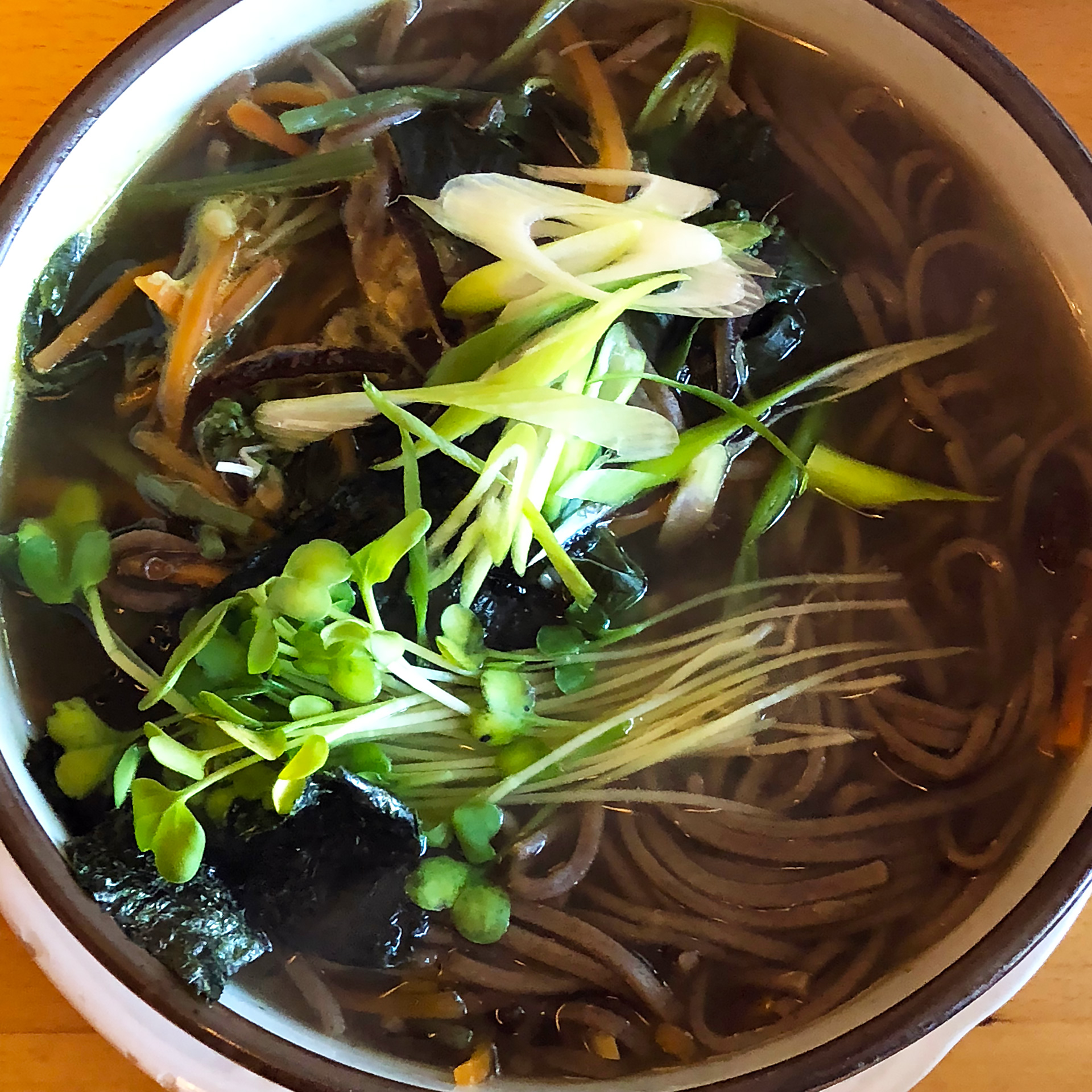 Sansai Noodle Soup: Soba noodles, wild mountain vegetables, bracken, bamboo shoots, wood ear mushrooms, carrots, enoki. ($12)