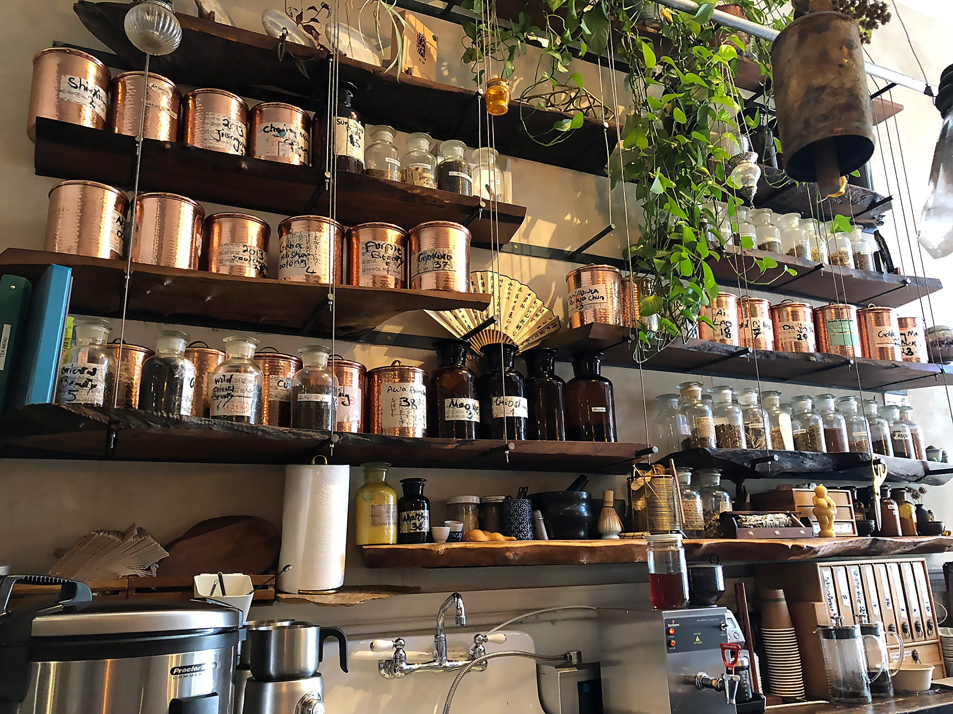 The shelves at Beloved Café are lined with herbs, teas and elixirs.