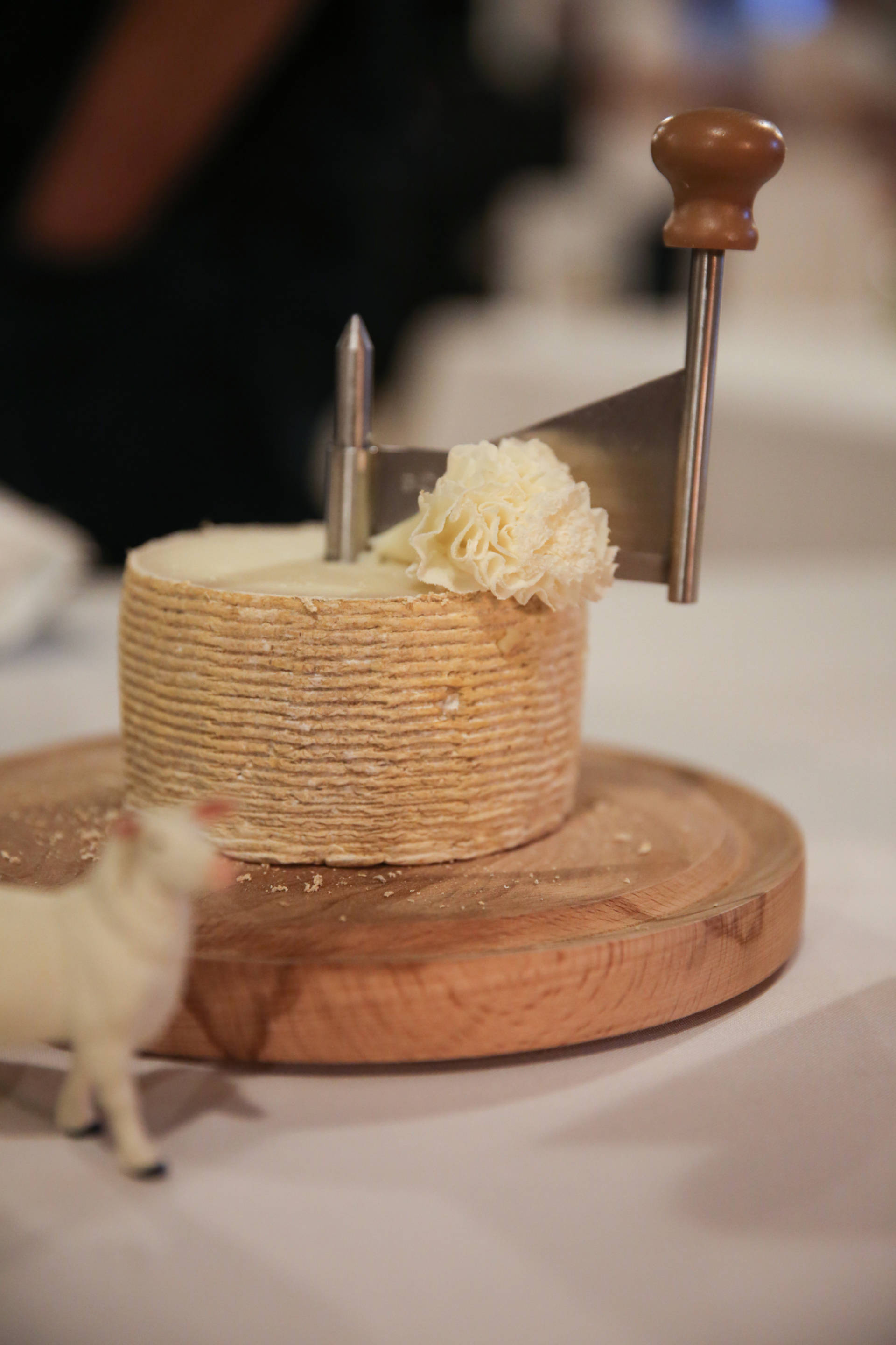 The array of cheeses at the SF Cheese Fest are lovely to admire, but even better to taste.