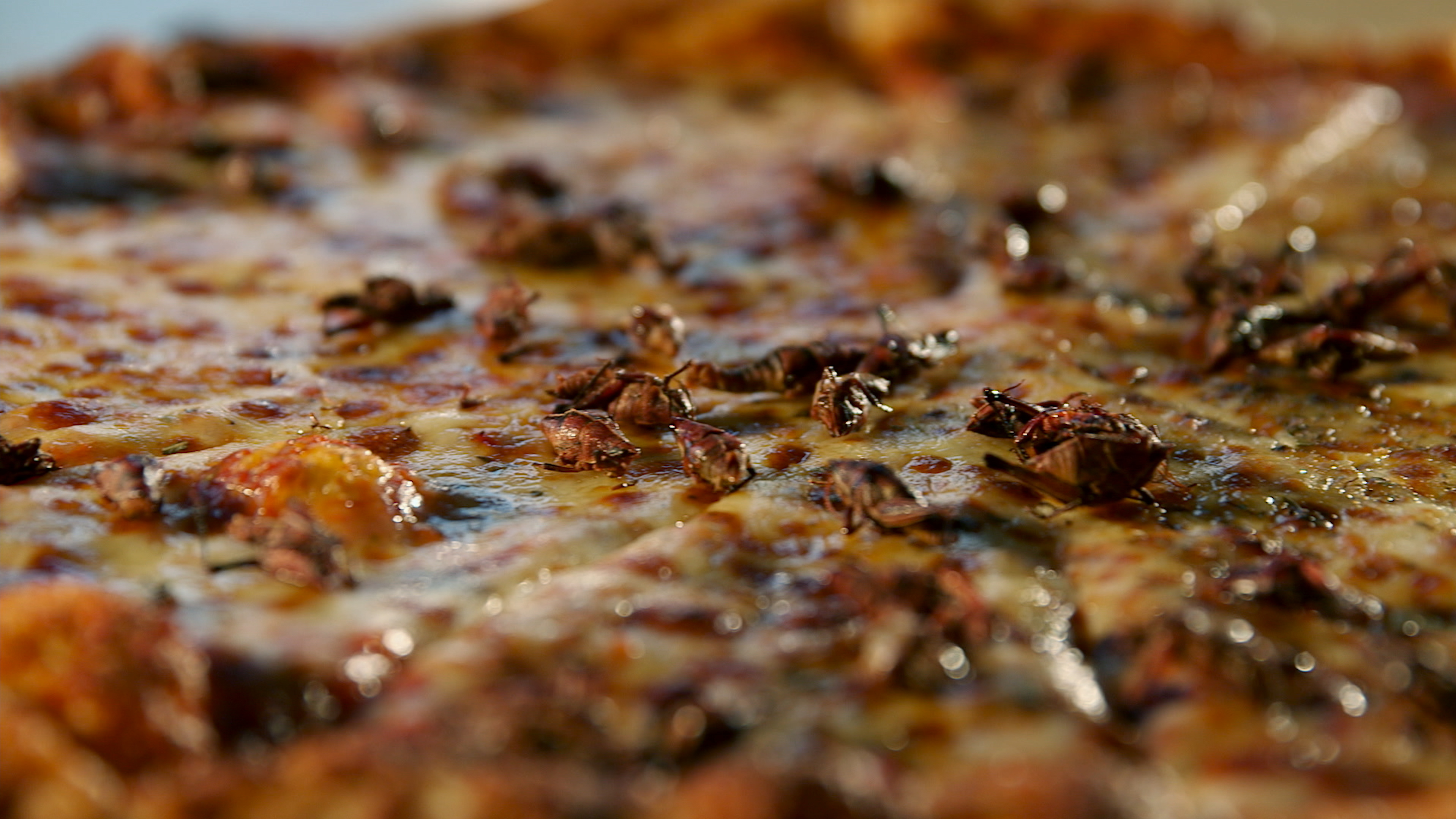 "Crickets on a pizza? Chef David George Gordon likens the insects to crawfish. Chef Joseph Yoon agrees, calling them ""gateway bugs."""
