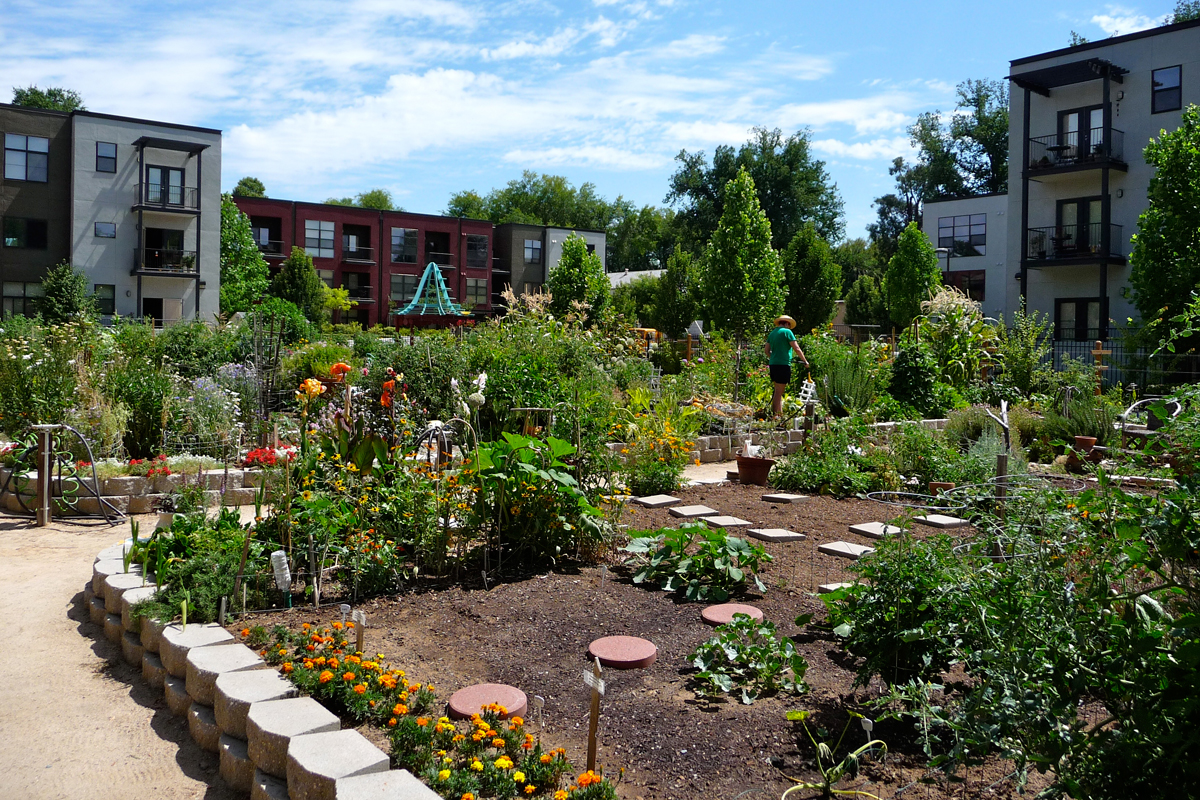 The Fremont Community Garden in Sacramento.