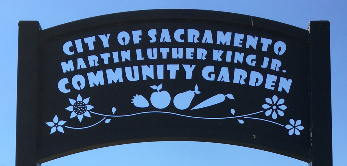 Martin Luther King Jr. community garden of Sacramento.