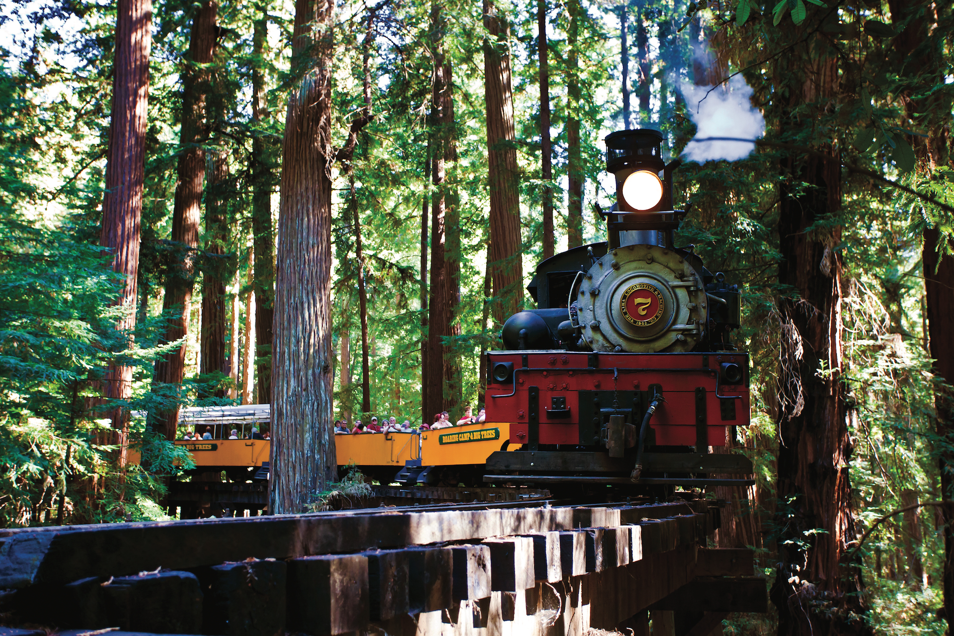 Steam engine cutting through redwood forest