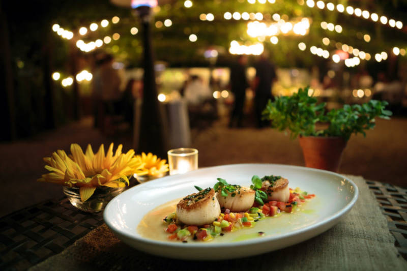 Day boat scallops with summer squash and tomato confit, Wedding at Barndiva