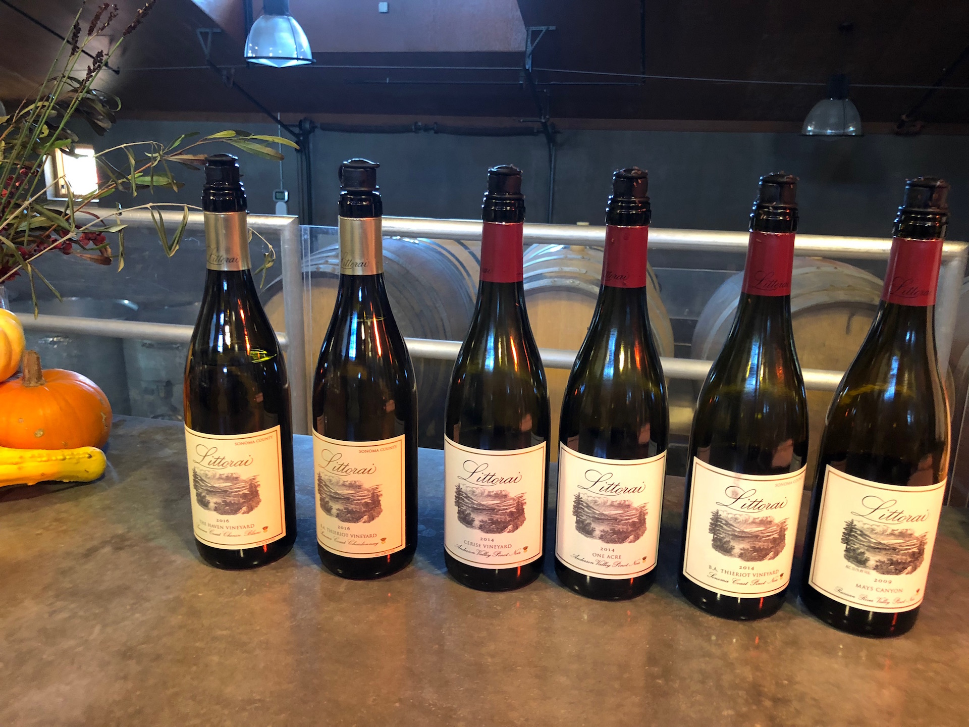 A Northern California Wine Bootcamp Adventure: From Boonville to Sebastopol