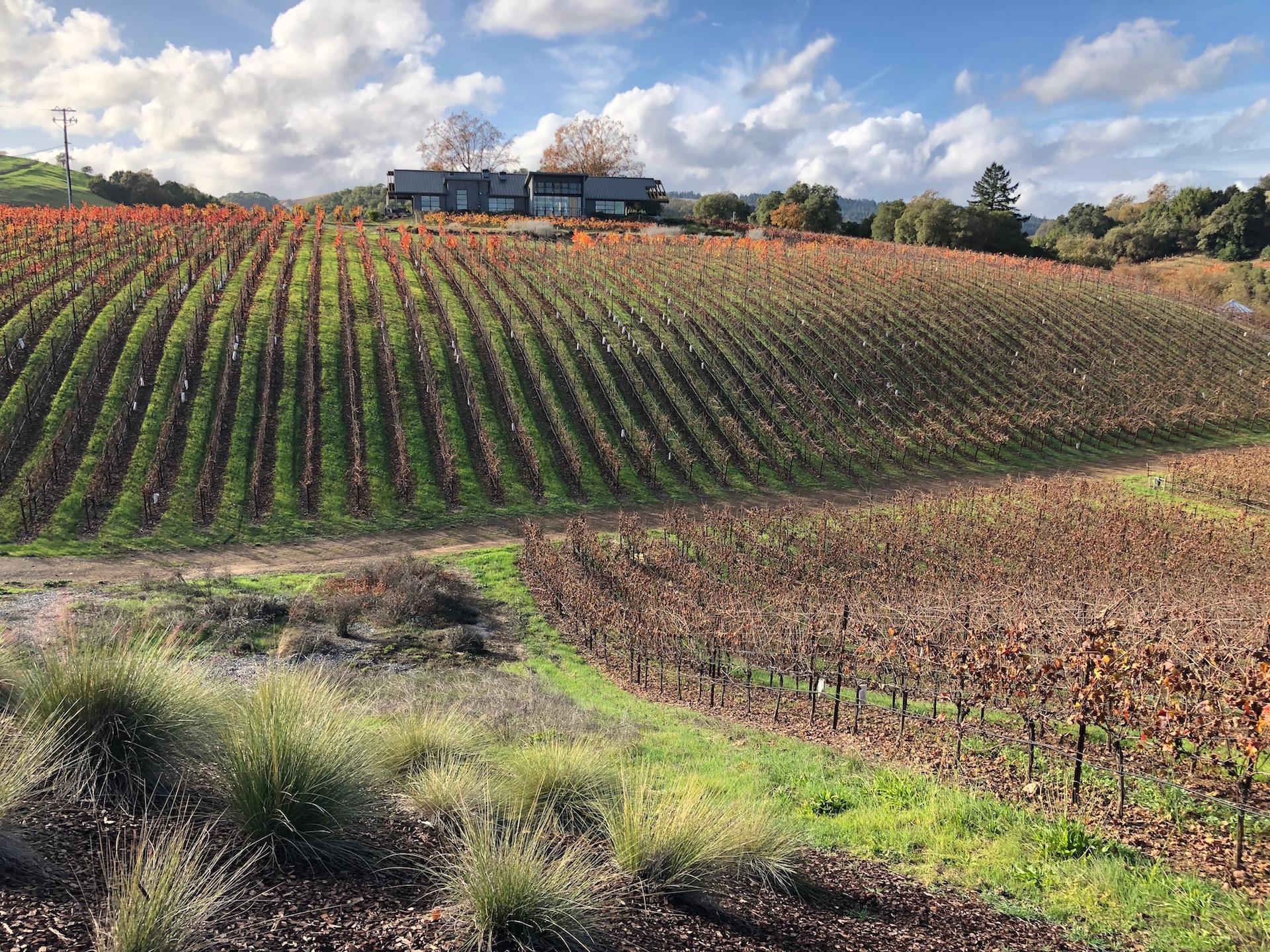 The magnificent MacRostie Winery & Vineyards estate in the Russian River Valley