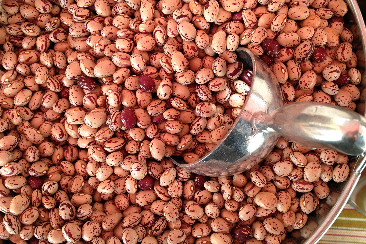 A large bowl of dried cranberry beans