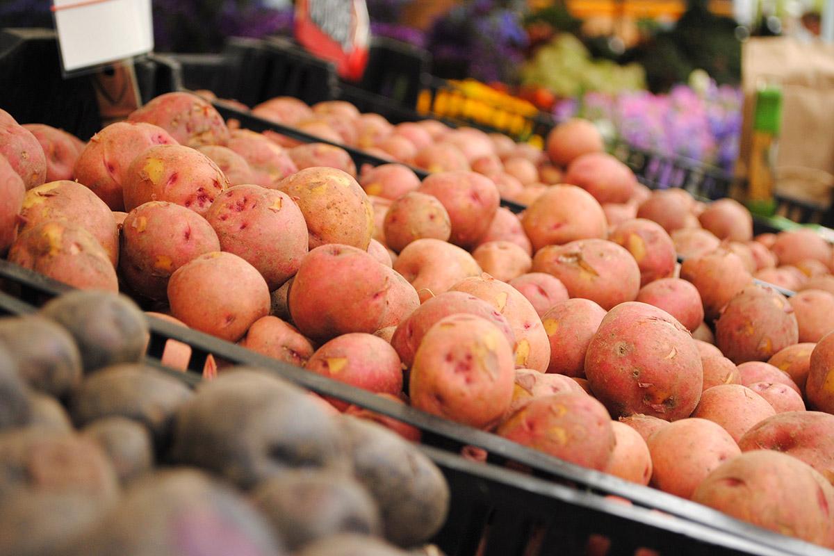 A bushel of potatoes