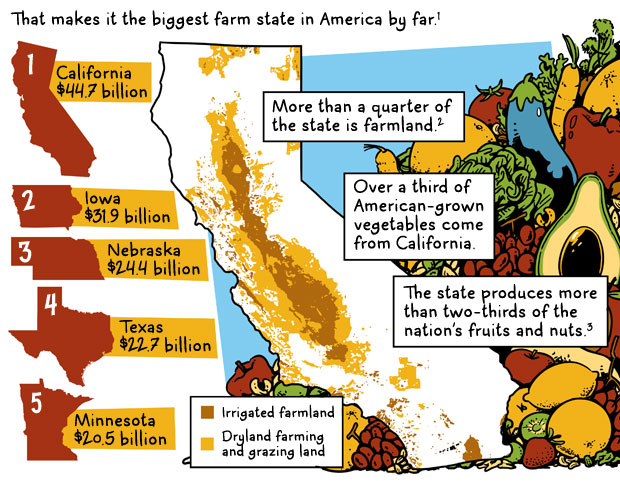 Parched Produce: California Agriculture in a State of Drought