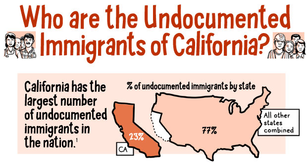 Who Are California's Undocumented Immigrants? A Cartoon Explainer