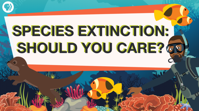 Is the Endangered Species Act at Risk of Extinction?